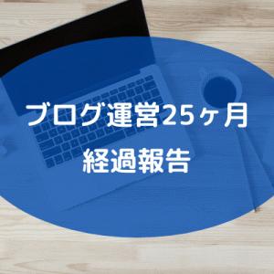 【ブログ運営】ブログ開設してから25ヶ月経過の現状報告。