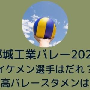 都城工業バレー2021~イケメン選手はだれ?春高バレースタメンは?