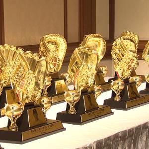 【2019ゴールデン・グラブ賞】受賞選手発表は10月31日!有資格者一覧も掲載