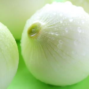 [末期癌と腸]580:腸を健康に導く食事9~タマネギ~