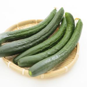 671:【末期癌と免疫】豆とウリ科の「出す力」でむくみ予防!むくみは体の冷えの原因!