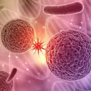 721:【末期癌と免疫システム】癌と闘う免疫細胞~免疫の世界の登場人物とは