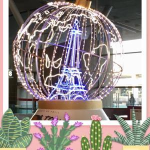 ♪パリ・ロンドン・モンサンミッシェル♪クリスマスの旅☆早かった一週間もう帰国