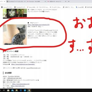 【ブログ記事】つ・い・に…!?メディア掲載されました~ヾ(*´∀`*)ノ