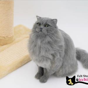 羊毛フェルト「スコティッシュフォールド」完成!