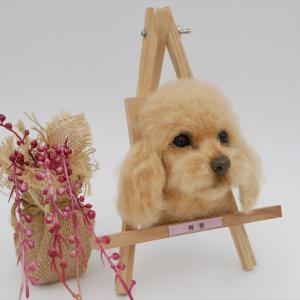 令和3年1月~2月の羊毛フェルト作品集~!