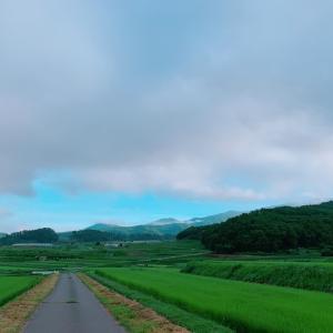 コボちゃんの田舎体験*