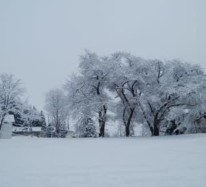 野沢温泉冬の旅