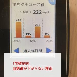 1型糖尿病!体調次第で血糖値が安定した。やっぱり睡眠は大事