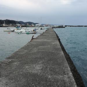 館山築港で釣り 2019/02/23