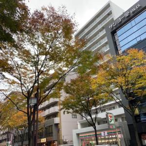 11月回去東京祭拜婆婆