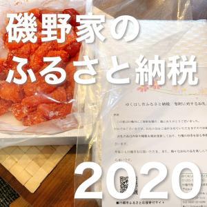 【磯野家のふるさと納税】大嘗祭の特A無洗米を申し込み!7月26日までならPayPay1万円もらえるよ