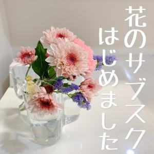 【お花で片付く・変わる・いつもの暮らし】花のサブスクBloomee LIFEが届いたよ。送料・花の持ち・口コミは?