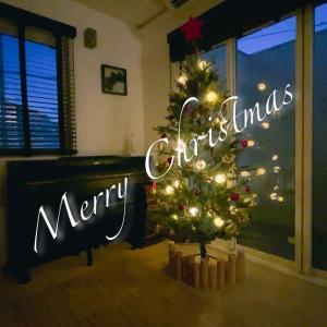 【玄関のしつらえ&磯野家の日常】北欧風のおしゃれクリスマスツリーも全く気づかれない磯野家