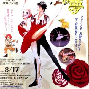 東京バレエ団 の ドン・キホーテの夢 に…♪