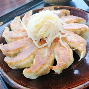 【旅行】浜松産まれなのにはじめて浜松餃子食べました♪
