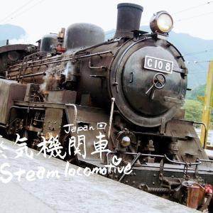 静岡県大井川鐡道のSLに乗ってきました♪