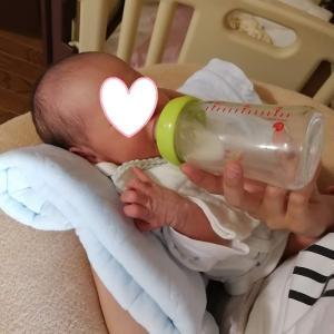 4人目の孫が産まれて半月たちました。
