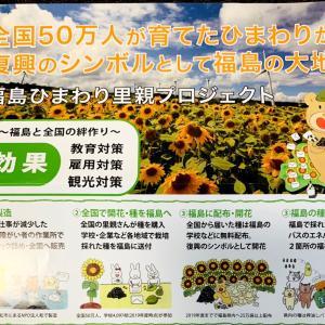 福島ひまわり里親プロジェクト花を咲かせたい