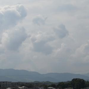 石垣島の於茂登岳登山
