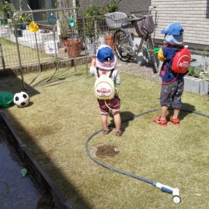 【コロナウイルス】緊急事態宣言2日目。接触を避けるため、何とかお庭から出ずに遊んでます。