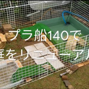 【亀】亀庭を手直ししました!
