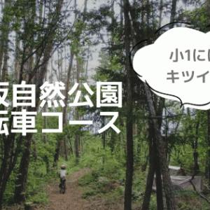 穂坂自然公園の自転車コース!高低差あり山道に小学生が挑戦