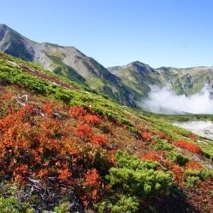 9/19-21、再訪、白馬・小蓮華岳・雪倉岳山行その➁(雪倉岳界隈)