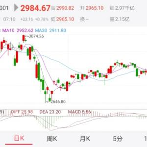 2020年上半期人民元資産運用結果 5か月ぶりに中国A株を購入・・+19,668元
