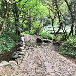 杭州週末一人旅 九溪ハイキングと龙井村サイクリングで自然を満喫