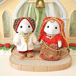 ゾウさんのインド風婚礼衣装