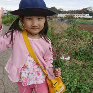 4歳児の世界観 ~歩き登園~