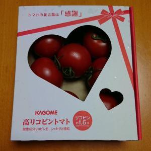 トマトとユニクロ、ジーユー購入品