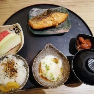 チャンギ空港で美味しい日本食を無料で頂いて帰国