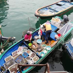 にしみつぐ?いいえ、西貢(サイゴン)です。
