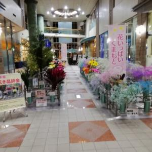 熊本県花き品評会