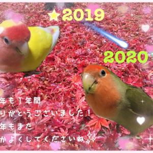☆New Year's Eve☆