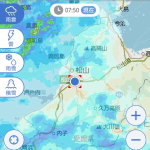 今日は雨~。