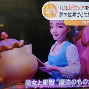 東京ディズニー ランド 新エリア 公開 美女と野獣