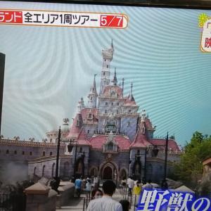 2 東京ディズニーランド 風間俊介 一周ツアー ヒルナン