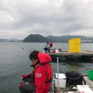 2019年度  京都チヌ釣り研究会 〜3月例会〜
