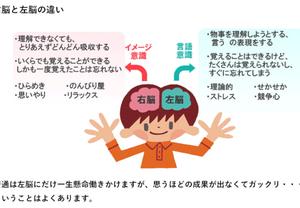 【七田式が重視する右脳!!】「ねづっち」さんから学ぶ「右脳の大切さ」を知るお話です。