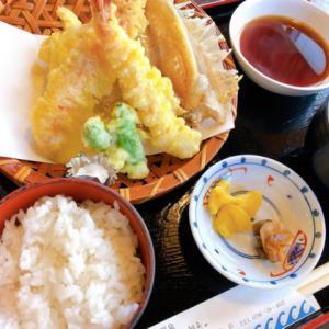 城崎温泉で美味しい海鮮料理を食べるなら「おけしょう鮮魚 海中苑」がおすすめ!