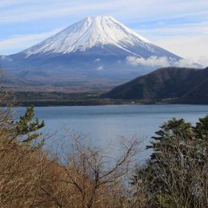 富士山と対面してきました