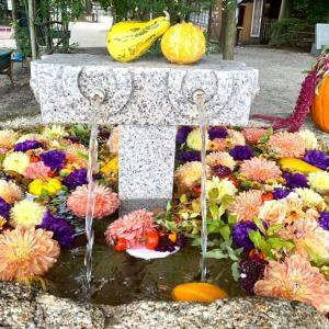 秋旅行での神社巡り