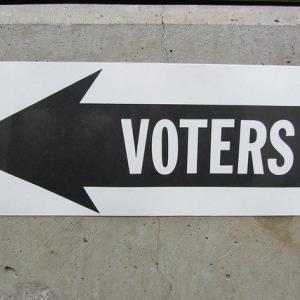 今度こそ考えて投票したい!【超簡単! 1分でできる 政党の選び方】を見て