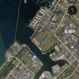 アオリイカ 新潟東港攻略