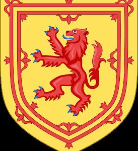 死闘 --2019 ラグビーワールドカップ 日本vsスコットランド--