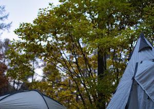 キャンプスナップ 秋の高地10(完)