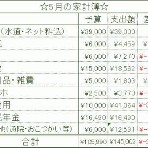 【収入公開】5月の家計簿結果報告 アラフォー独身一人暮らしの収入・支出・電気代・ガス代まとめ